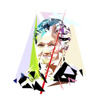 Simone Veil - Un personnage politiques représentés à la façon de l'éloge de l'approximation