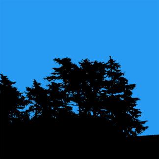 Forme et fond - Toile en noir et bleu de Sa Majesté le cèdre
